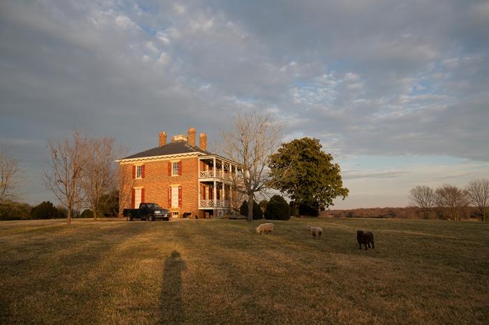 Snowden, Goochland VA, November, 2012