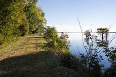 End of the Washington Ditch trail, Lake Drummond, Great Dismal Swamp, Suffolk, VA, October 20, 2013